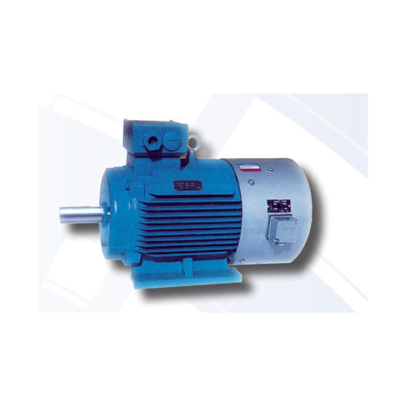 Total Industrial Solution Induction Motor Inline Motor